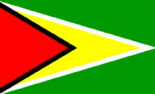 GUYANA - HAND WAVING FLAG (MEDIUM)